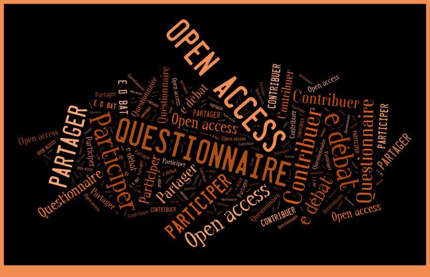 questionnaire-oa-3